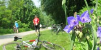 Great Allegheny Passage flowers trailside