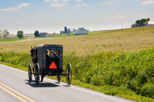 Horse and Buggy seen biking along the Cycle Amish Country Bike Tour with Wilderness Voyageurs